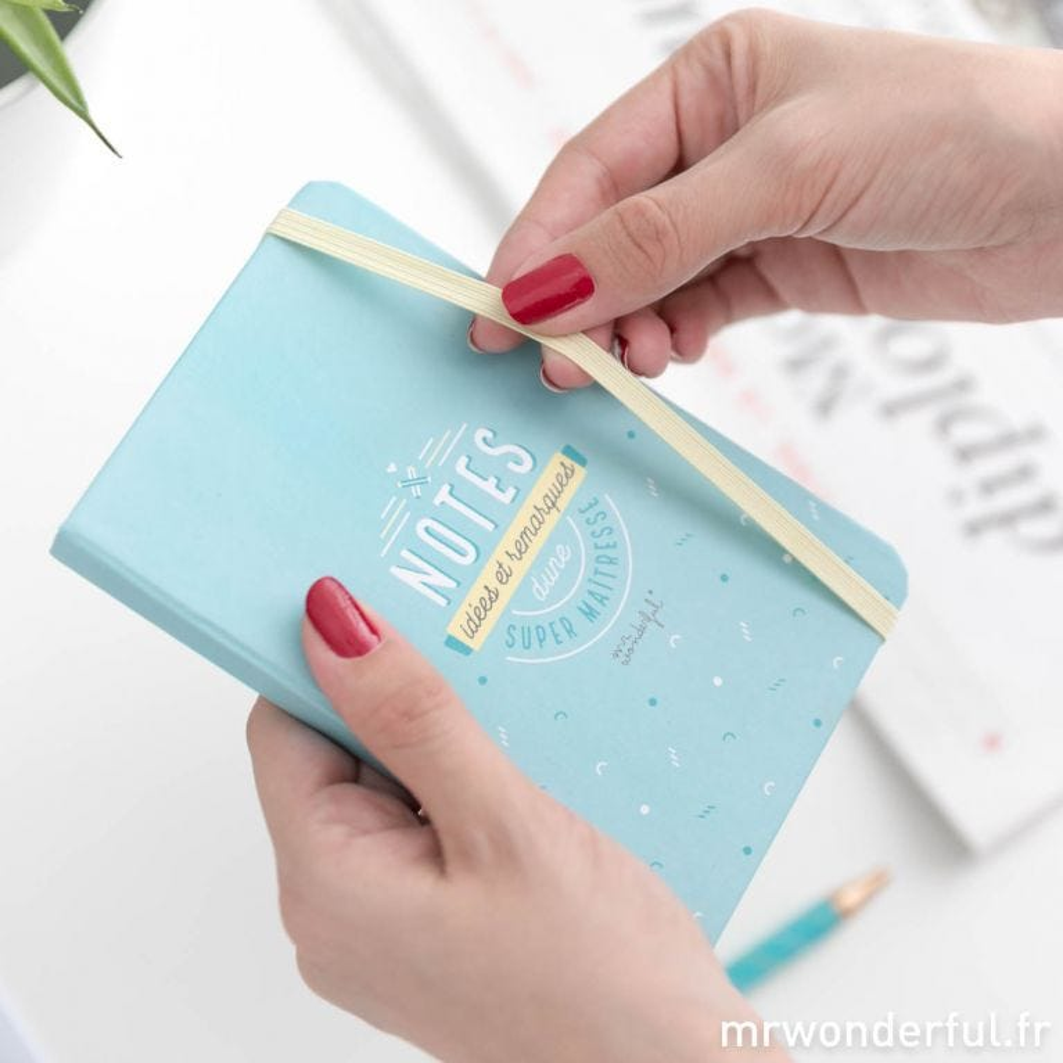 cahier bleue à offrir - maîtresse